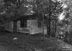 Abandonne (Denis Hbert) Tags: trees shadow summer blackandwhite bw white house canada black monochrome rural blackwhite noir shadows noiretblanc quebec decay country ngc august nb ombre arbres qubec t maison campagne extrieur arbre blanc abandonned montrgie shadowy richelieu vgtation 2015 ombrage abandonne newtopographics aot newtopographic newtopographer summer2015 denishbert anthropogeo t2015