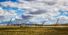 Tipis at the Jump (ebhenders) Tags: sky field clouds jump buffalo montana great first falls lodge peoples poles ulm tipi