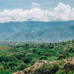 Day 342. Into the hot lowlands. No coffee, no crops, not even many shops, just dry river beds and mountains in the distance. Should be climbing those mountains today and escaping the heat. #theworldwalk #travel #colombia