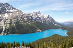 Peyto Lake (Anne Oldfield) Tags: blue trees summer sky lake canada wow amazing peaceful glacier alberta unreal tranquil peytolake beautfil
