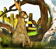 The Hare with the Amber Eyes... (rubyblossom.) Tags: tree bird grass fence book amber eyes hare with story ladybird trunks titles no6 2016 rubyblossom rubystreasures angiesanimalantics