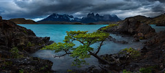 Reverence (Bruce_Hood) Tags: panorama patagonia lake seascape mountains tree water clouds landscape rocks pano panoramic pahoe