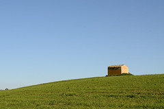 Agira - The house on the hill (ciccioetneo) Tags: italy field grass landscape enna countryside nikon italia country campagna erba campo sicily minimalism sicilia ruralhouse agira nikon50mmf14 casarurale minimalisticlandscape d7000 nikond7000 ciccioetneo