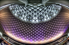 Purple Mesh (Sean Batten) Tags: uk roof england london station architecture nikon purple unitedkingdom fisheye trainstation kingscross hdr lattice