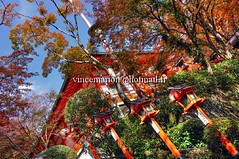 Kurama002 (vincemarion) Tags: red fall nature japan automne landscape rouge temple maple kyoto autumnleaves momiji paysage japon feuille koyo erable kuramadera couleurautomnale