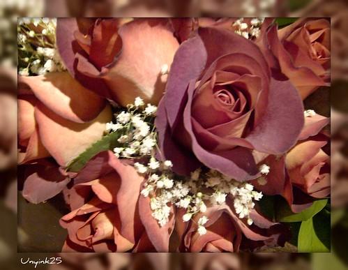 ~ fragrance of love ~