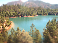 Shasta: Tilt Shift (tifftoh) Tags: california blue trees orange lake green nature water forest catchycolors aqua i5 turquoise teal shoreline evergreen shasta shores shastalake lakeshasta bluegreen cerulean evergreentrees tiltshift