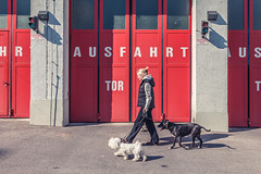 128 / 365 - red gate @ Wrthgasse (Matthias Obergruber Photography) Tags: vienna street woman dogs canon austria streetphotography streetlife pitbull firestation maltese firedepartment dbling walkingby 2470mm ausfahrt 1190 at canon5dmk2 vienna365 wrthgasse