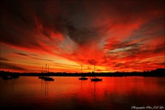 Sydney sunset (Jong Soo(Peter) Lee) Tags: sunset australia sydneysunset leichhardtpark