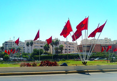 Flags litter the city of Casablanca (TamaraM.) Tags: red summer green grass flag patriotic morocco arab casablanca moroccan