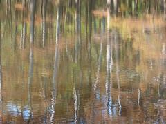 The Black Warrior River (nartenimages (catching up)) Tags: autumn usa fall water automne reflections river eau unitedstates fiume alabama acqua autunno riflessi reflets fleuve blackwarriorriver