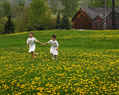 Flower Girls (jan lyall) Tags: wedding bc indian firstnations ksan gitxsan micarttttworldphotographyawards micartttt kellyandjerome