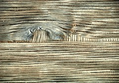JKN©-BW-0660 (John Nakata) Tags: wood abstract pattern knot plywood