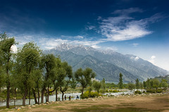 On the way to Pahalgam (Saad.Akhtar) Tags: india kashmir pahalgam