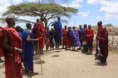 serengeti morning drive 3-6-14 180 (frank j skokoski's green ridge photography) Tags: africa safari serengeti masai masaivillage serengetimorningdrive3614