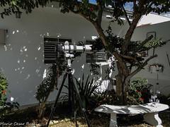 DSC01025 (Mario C Bucci) Tags: kick para  uma que vermelho ou com 20 kg ingles dslr em lentes chute quer cabea maquinas at patada dizer teleobjetiva africanes