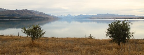 Blick auf Mt Cook und Lake Pukaki