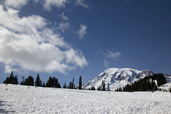 IMG_1112 (elenafrancesz) Tags: hike rainier wordless
