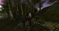 Petting a Horse in the Shire (Ima Peccable) Tags: horses secondlife shire scenicsecondliferegiontheshiresecondlifeparceltheshireahomelysliceofmiddleearthsecondlifex195secondlifey228secondlifez16