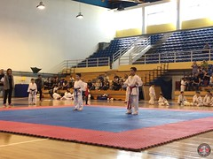 stefanou_15_5_2016_knockdown_138
