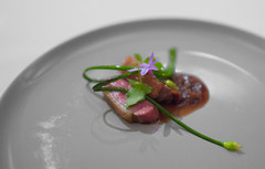 18. Aged Duck (soundofdesign) Tags: castagna portland justinwoodward