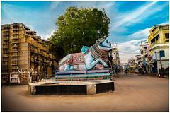Meenakshi Amman Temple (#Madurai, #TamilNadu)