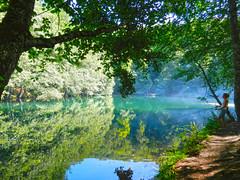 Oltac Kz (talipcetin) Tags: life park fish tree fog forest turkey fishing quiet peace trkiye 7 peaceful national rod su sis milli bolu olta kz aa gl yansma orman gller yedigller balk yedi