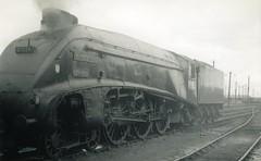 img786 (OldRailPics) Tags: steam aberdeen kingfisher british locomotive railways ferryhill 61b 60024