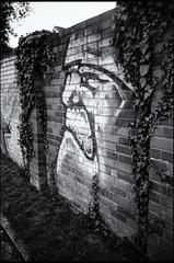 Hallo, Herr Nachbar (georgsfoto) Tags: blackandwhite bw monochrome graffiti graffito rodinal expired viking rostock hansa heimat shotonfilm fujineopan400 fch schwarzweis rodinal1100 semistanddevelopment crappynegativescan minoxml developedin