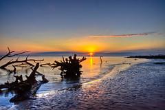 Big Talbot Sunrise (Jeremy Duguid) Tags: trees sun beach night sunrise canon island dawn big sand florida north jeremy clear jacksonville fl ripples amelia bluffs fla bluff talbot duguid 50d jeremyduguid