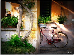 time to bike (Anche*) Tags: luce bicicletta anche pedalare