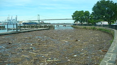 Low tide Delaware River