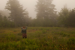 Fog Girl (Ghostly Photography) Tags: trees girl field fog dress maine eerie wildflowers northport pointlookout d90