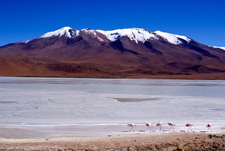 Bolivia - Salt Flats Tour Day 3
