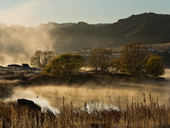 Playing Birds (Ian@NZFlickr) Tags: morning misty bravo frost dam central alexandra nz otago butchers