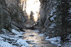 CANYON LIGHT (RussellCA) Tags: travel winter canada alberta firstsnow canadianrockies russellca johnstoncanton