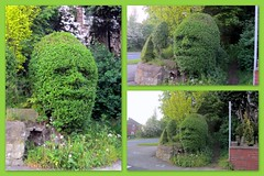 The face of... (Mike-Lee) Tags: green face collage sheffield picasa hedge may2012
