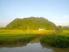 Southern Thailand from a moving train 991 (oznasia) Tags: thailand lumix asia southeastasia rice paddy panasonic johnstory karst js63 phatthalung oznasia tz10