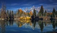 Sentimental Lady (P. Oglesby) Tags: autumn reflections grandtetonnationalpark thehighlander godlovesyou schwacherslanding photocontesttnc12