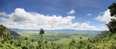 Cratre du Ngorongoro (jnyaroundtheworld) Tags: africa animals tanzania wildlife lion ngorongoro crater zebra giraffe massai serengeti animaux girafe afrique faune zbre tanzanie greatmigration wetseason manyaralake ndutu felins masa lacmanyara saisondespluies grandemigration
