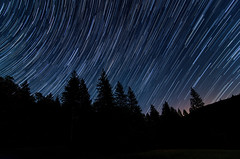Star Trails at Mendocino National Forest (andreaskoeberl) Tags: california longexposure blue trees black night dark stars star lowlight nikon trails wideangle backpacking rotation mendocino starry startrails mendocinonationalforest 1116 d7000 snowmountainwilderness nikond7000 andreaskoeberl