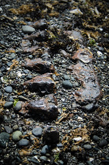 Straight Six (r3m00r3) Tags: beach hornbyisland 38mm phippspoint 3580mmf456 nikond7000 11250secatf40