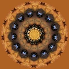 Eye Kaleidoscope (Tobyotter) Tags: eye photomanipulation altered kaleidoscope tony paintshoppro alter bodypart kaleidoscopes kaleidoscopesonly