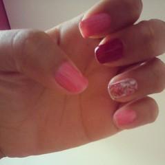 roooooosa s2 (malununes2) Tags: flores lindinho rosachoque dehoje rosababy ludquefez