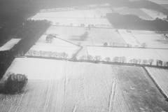 (Yerg*) Tags: trees winter bw snow plane germany landscape noiretblanc grain nb hanover rx100