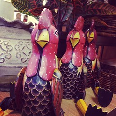 4/28/14 Chickens in the House (Karol A Olson) Tags: chickens decoration pierone iphone apr14 shoppingspree project3652014 mdpd2014