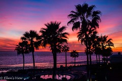 Colors of the Sunset (eking86) Tags: ocean travel pink sun beach colors mexico view purple dusk resort poolside