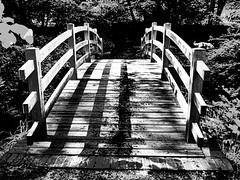 149/366: The Bridge (Den's Lens 2000) Tags: bridge blackandwhite bw mono surrey virginiawaterlake