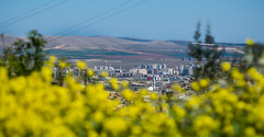 Sanliurfa in Spring (jonny hogg) Tags: poverty turkey refugees un unitednations syria crisis humanitarian wfp