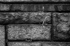 XT1-05-07-15-295-2 (a.cadore) Tags: nyc newyorkcity blackandwhite bw zeiss landscape uptown fujifilm riversidepark uws carlzeiss xt1 biogont2828 zeissbiogon28mmf28 fujifilmxt1